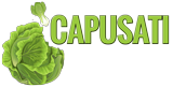 Associazione Capusati-Scaladi Logo